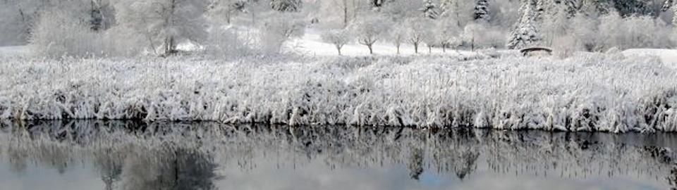 frostsm