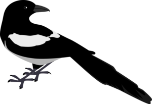 magpie-clip-art-zeimusu_Magpie_2_Vector_Clipart